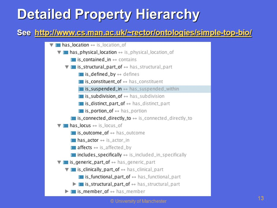 © University of Manchester 13 Detailed Property Hierarchy See http://www.cs.man.ac.uk/~rector/ontologies/simple-top-bio/ http://www.cs.man.ac.uk/~rect