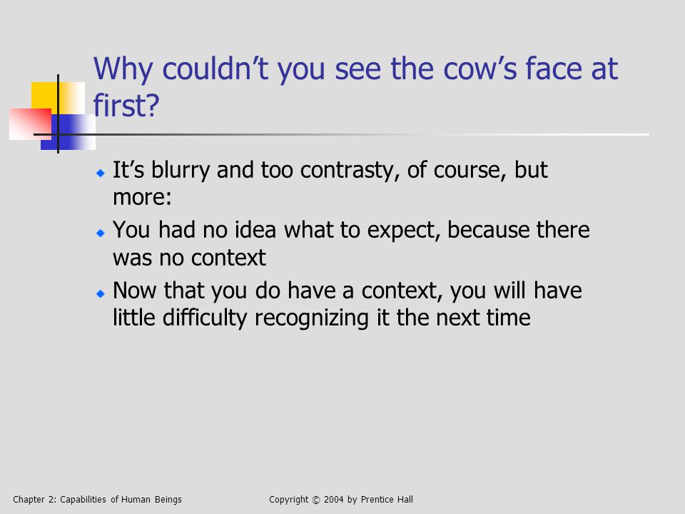Chapter 2: Capabilities of Human BeingsCopyright © 2004 by Prentice Hall Why couldn't you see the cow's face at first.