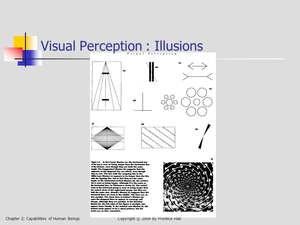 Chapter 2: Capabilities of Human BeingsCopyright © 2004 by Prentice Hall Visual Perception : Illusions