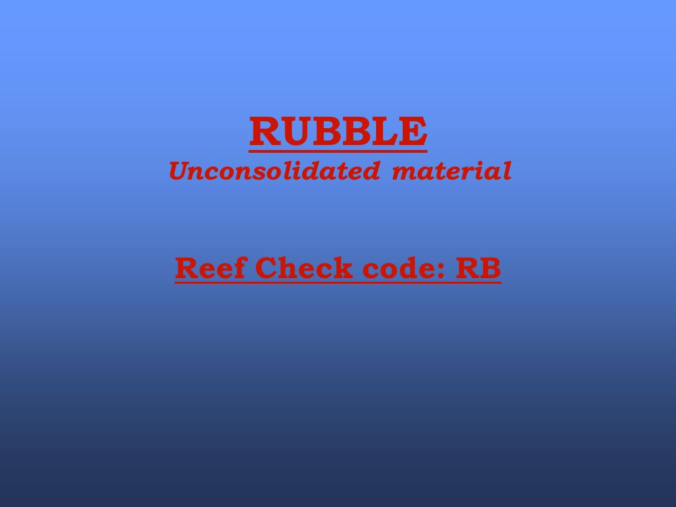 RUBBLE Unconsolidated material Reef Check code: RB
