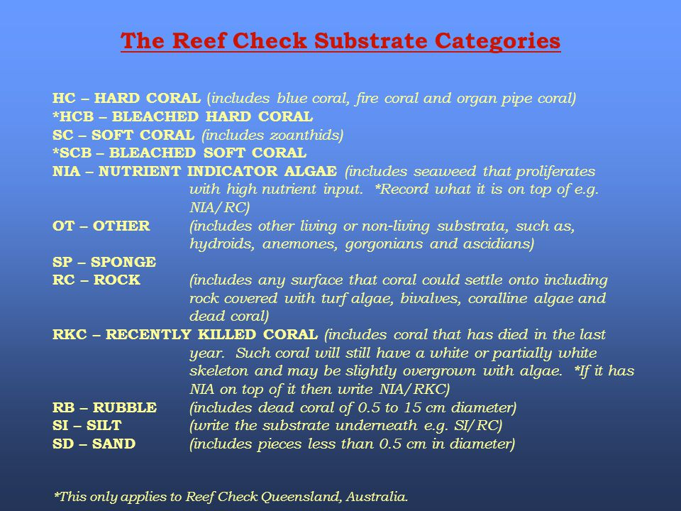 The Reef Check Substrate Categories HC – HARD CORAL ( includes blue coral, fire coral and organ pipe coral) *HCB – BLEACHED HARD CORAL SC – SOFT CORAL