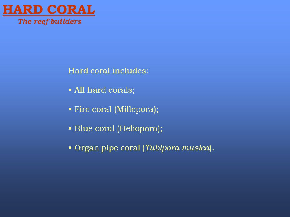 Hard coral includes: All hard corals; Fire coral (Millepora); Blue coral (Heliopora); Organ pipe coral ( Tubipora musica ). HARD CORAL The reef-builde