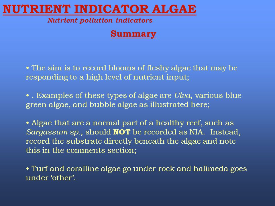 Summary NUTRIENT INDICATOR ALGAE Nutrient pollution indicators The aim is to record blooms of fleshy algae that may be responding to a high level of n