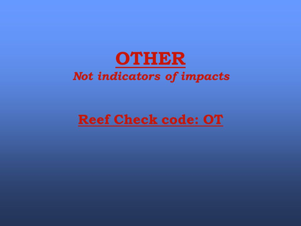 OTHER Not indicators of impacts Reef Check code: OT