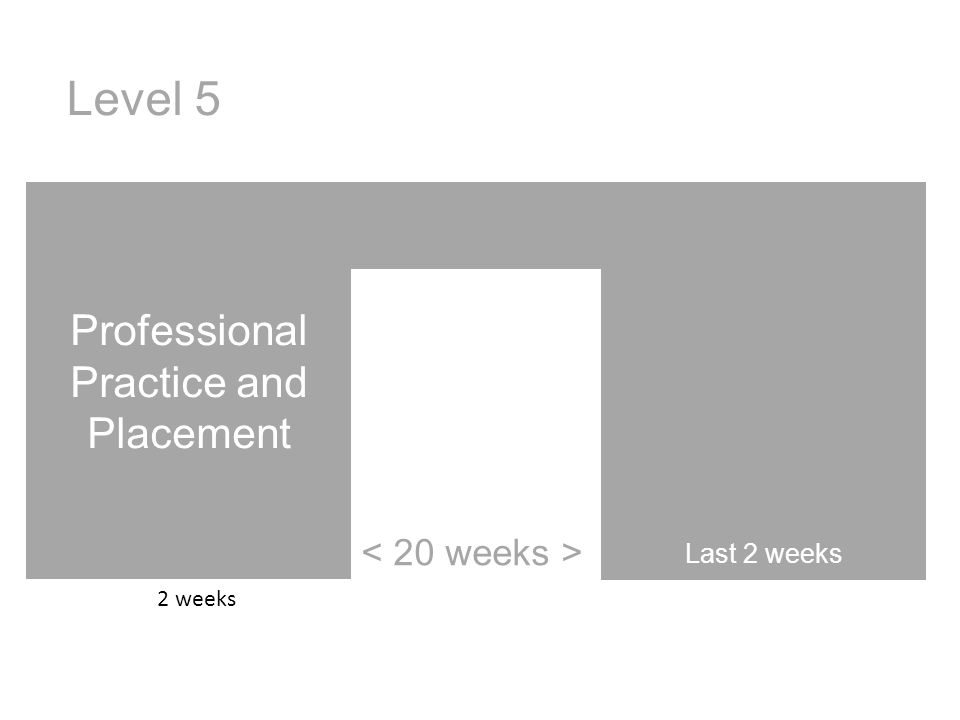 Professional Practice and Placement Last 2 weeks Level 5 2 weeks