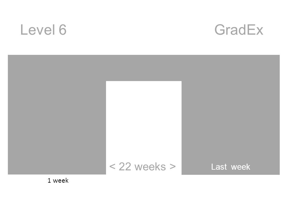 Last week GradExLevel 6 1 week