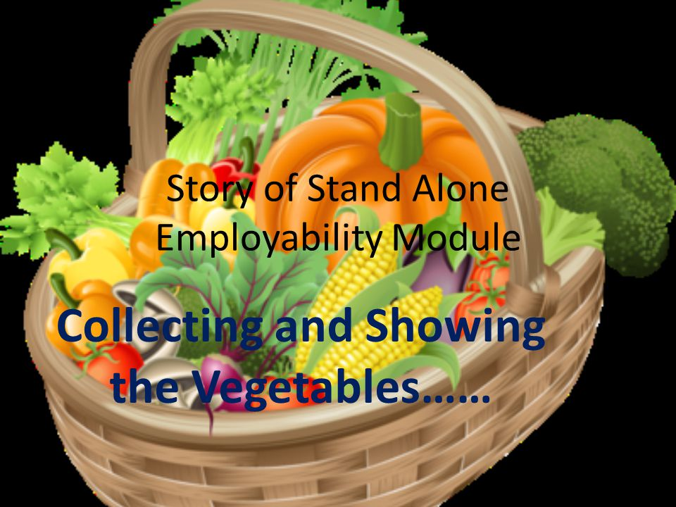 Story of Stand Alone Employability Module Collecting and Showing the Vegetables……
