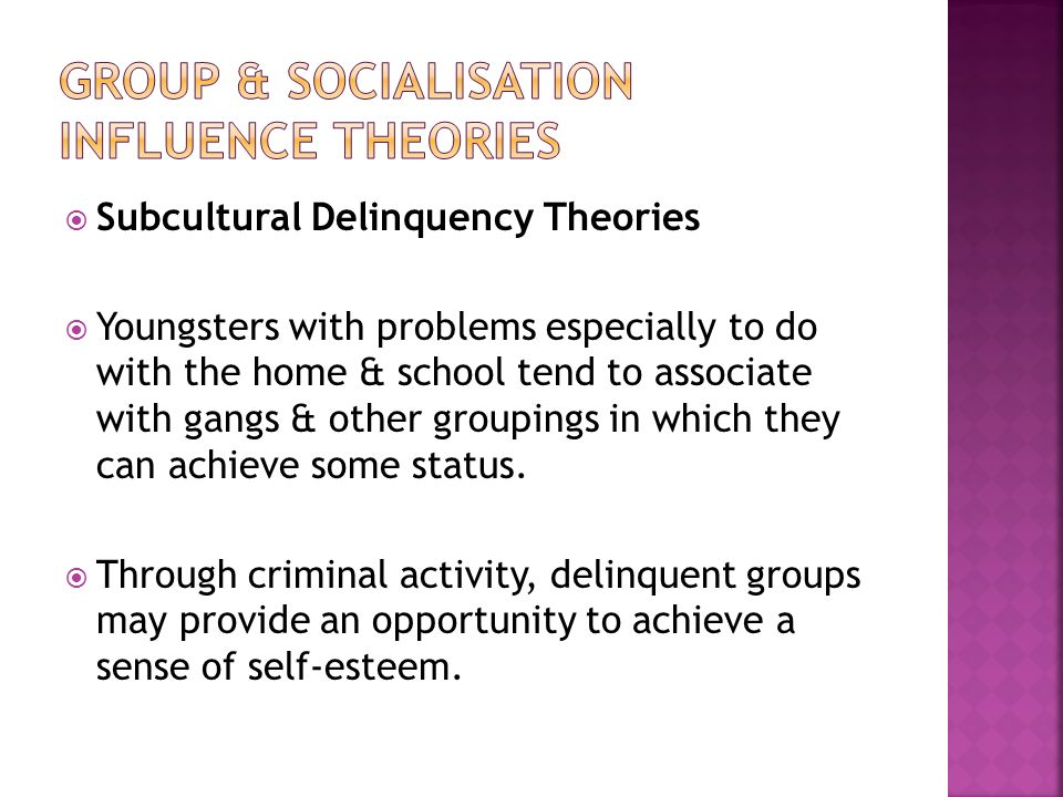  Subcultural Delinquency Theories  Youngsters with problems especially to do with the home & school tend to associate with gangs & other groupings in which they can achieve some status.