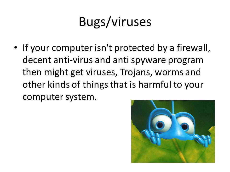 Bugs/viruses If your computer isn't protected by a firewall, decent anti-virus and anti spyware program then might get viruses, Trojans, worms and oth