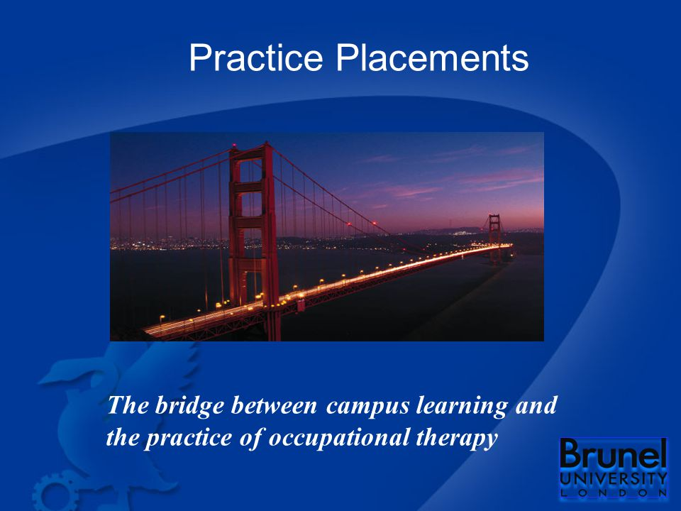 Practice Placements The bridge between campus learning and the practice of occupational therapy