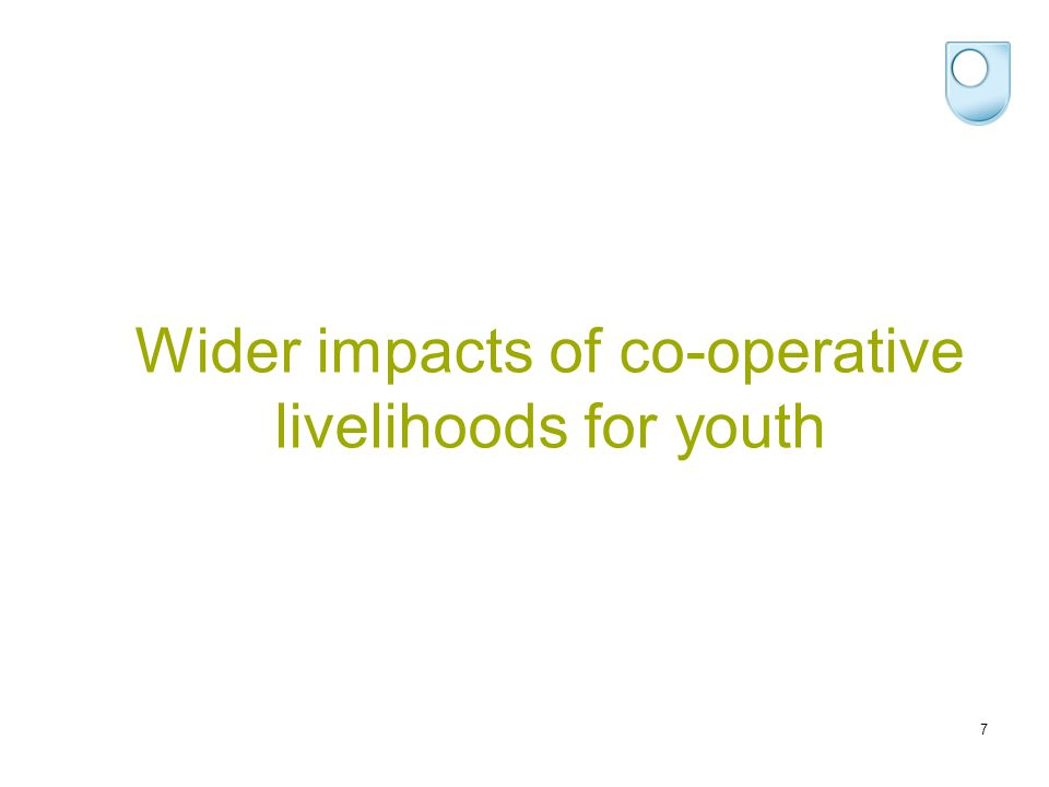 Wider impacts of co-operative livelihoods for youth 7