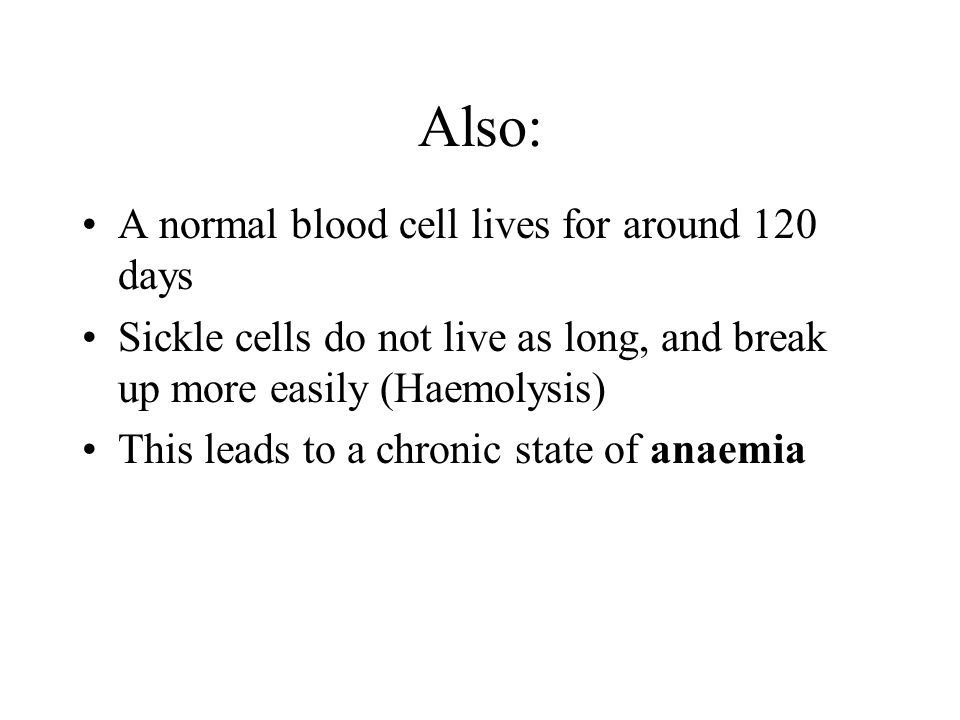 Also: A normal blood cell lives for around 120 days Sickle cells do not live as long, and break up more easily (Haemolysis) This leads to a chronic state of anaemia