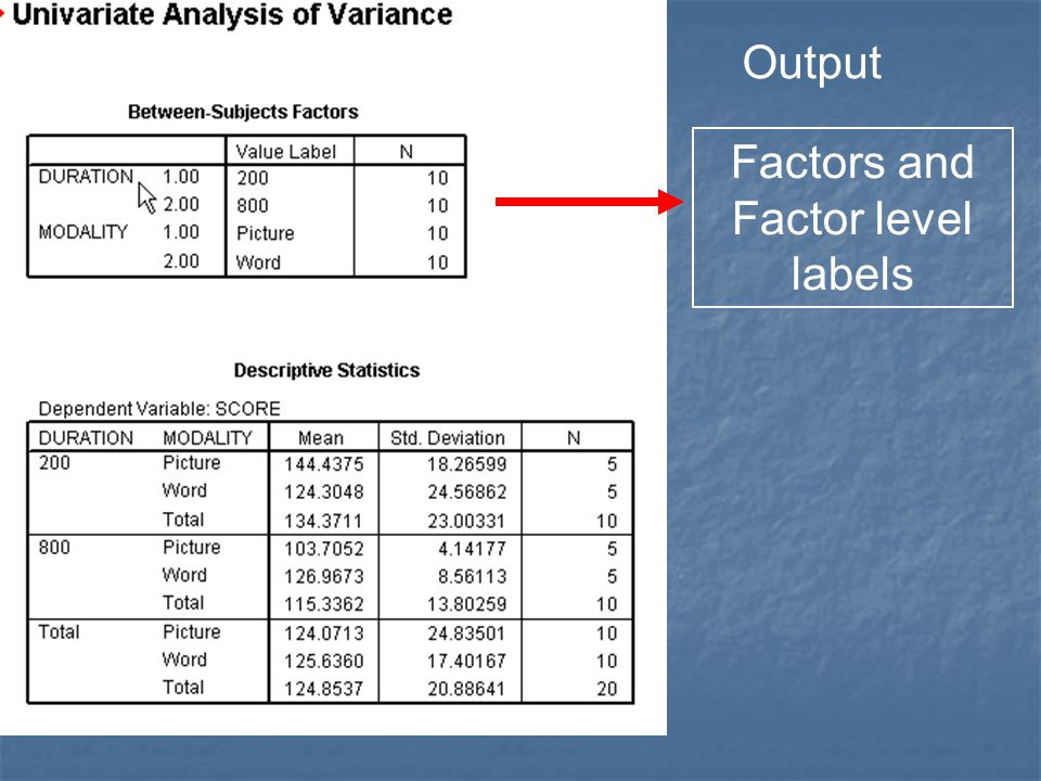 Output Factors and Factor level labels