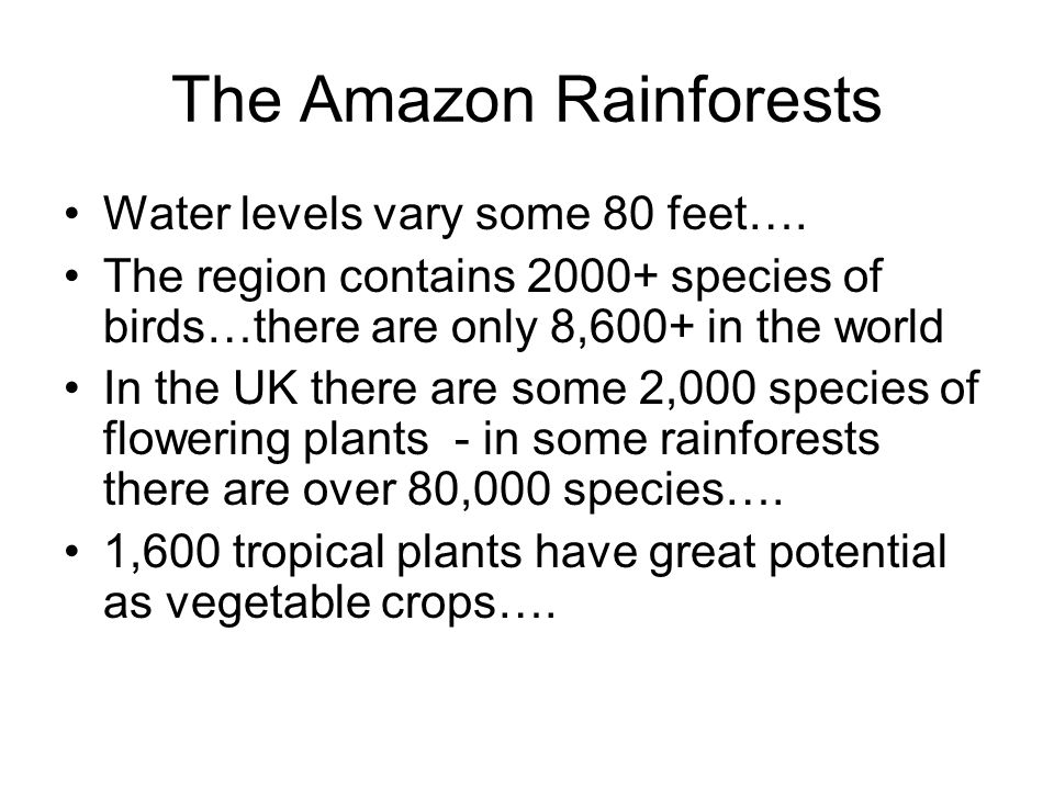 The Amazon Rainforests Water levels vary some 80 feet….