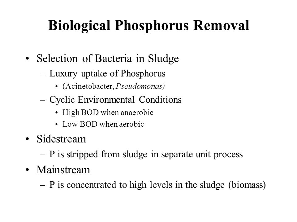 Biological Phosphorus Removal Selection of Bacteria in Sludge –Luxury uptake of Phosphorus (Acinetobacter, Pseudomonas) –Cyclic Environmental Conditions High BOD when anaerobic Low BOD when aerobic Sidestream –P is stripped from sludge in separate unit process Mainstream –P is concentrated to high levels in the sludge (biomass)