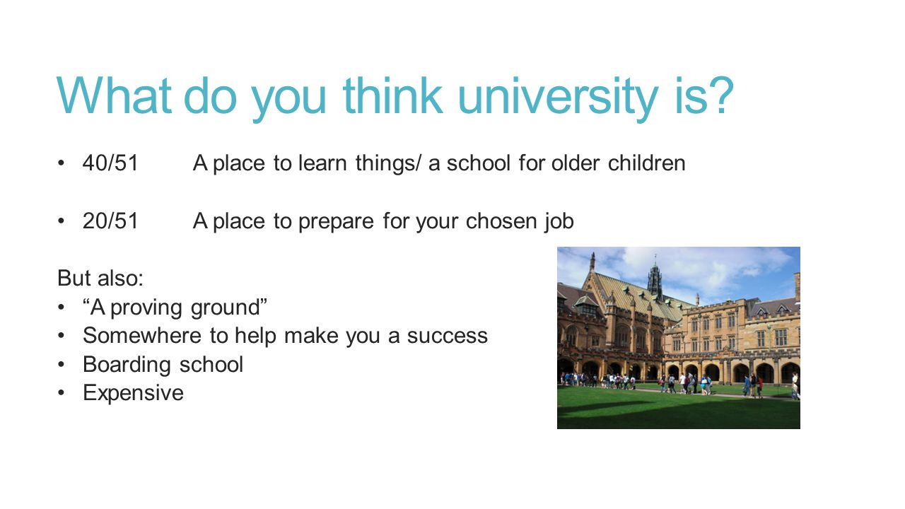 What do you think university is.