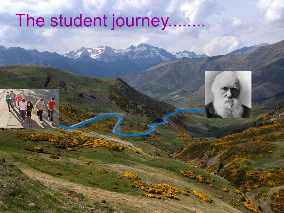 The student journey........