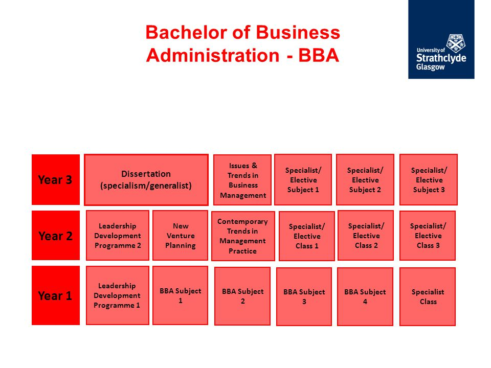 Bachelor of Business Administration - BBA Year 1 Year 2 Year 3 Dissertation (specialism/generalist) Leadership Development Programme 2 New Venture Pla