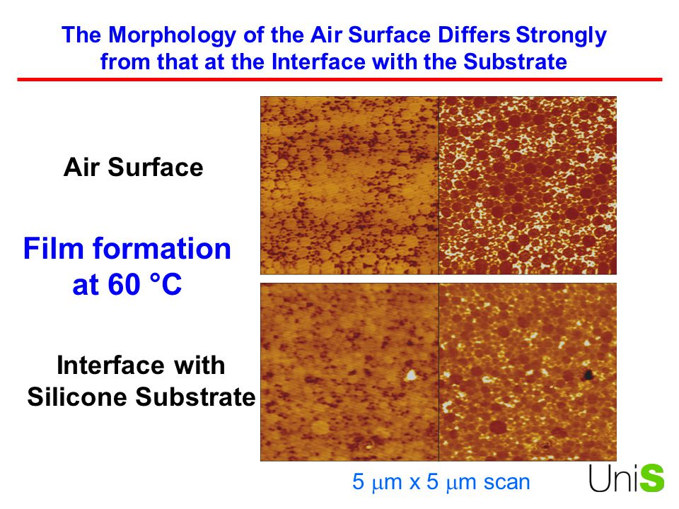The Morphology of the Air Surface Differs Strongly from that at the Interface with the Substrate Air Surface Interface with Silicone Substrate 5  m x 5  m scan Film formation at 60 °C