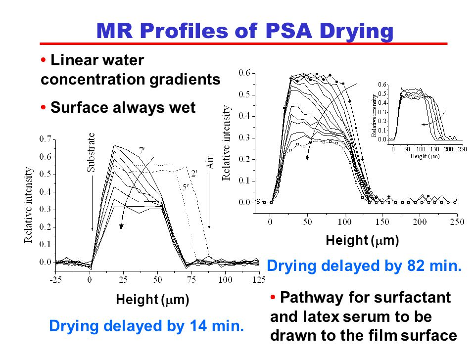 MR Profiles of PSA Drying Height (  m) Drying delayed by 14 min.