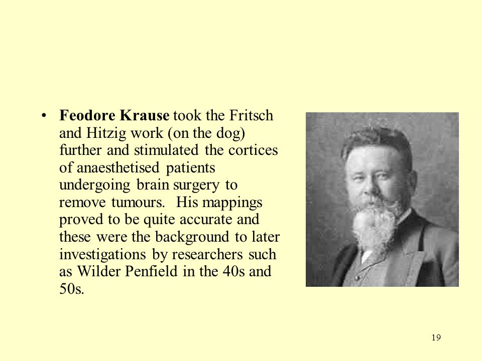 19 Feodore Krause took the Fritsch and Hitzig work (on the dog) further and stimulated the cortices of anaesthetised patients undergoing brain surgery
