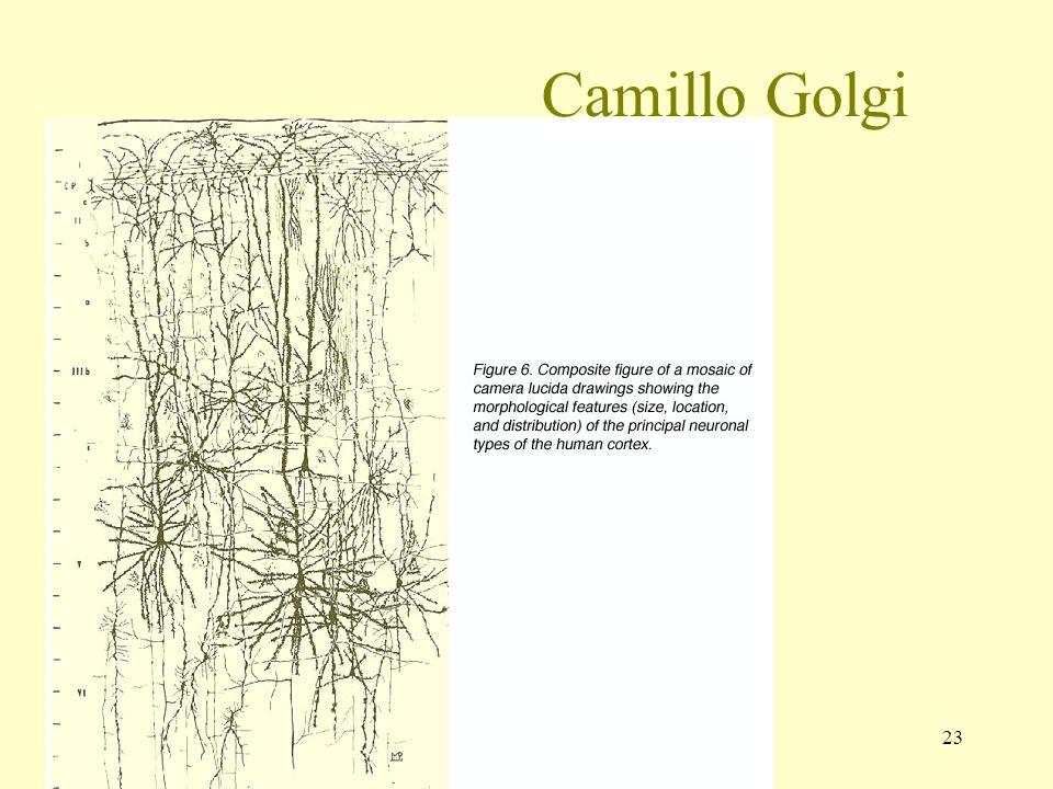 23 Camillo Golgi