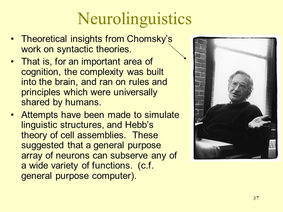 37 Neurolinguistics Theoretical insights from Chomsky's work on syntactic theories. That is, for an important area of cognition, the complexity was bu