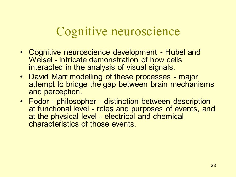38 Cognitive neuroscience Cognitive neuroscience development - Hubel and Weisel - intricate demonstration of how cells interacted in the analysis of v