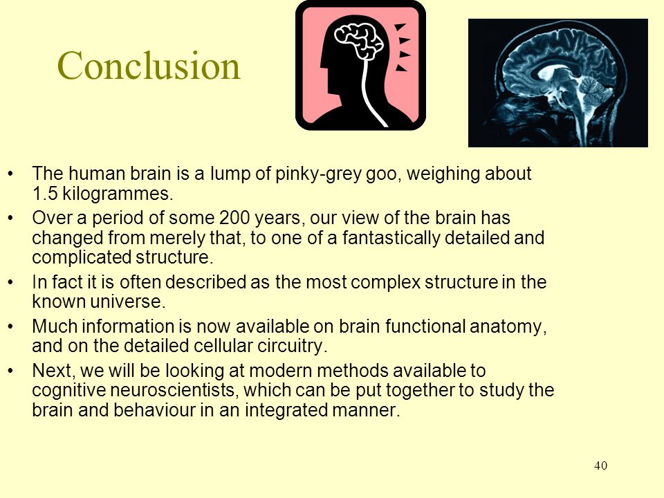 40 Conclusion The human brain is a lump of pinky-grey goo, weighing about 1.5 kilogrammes. Over a period of some 200 years, our view of the brain has