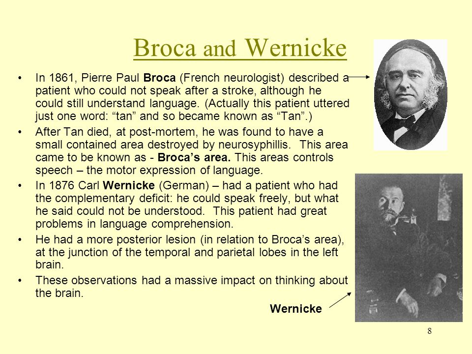 8 Broca and Wernicke In 1861, Pierre Paul Broca (French neurologist) described a patient who could not speak after a stroke, although he could still u