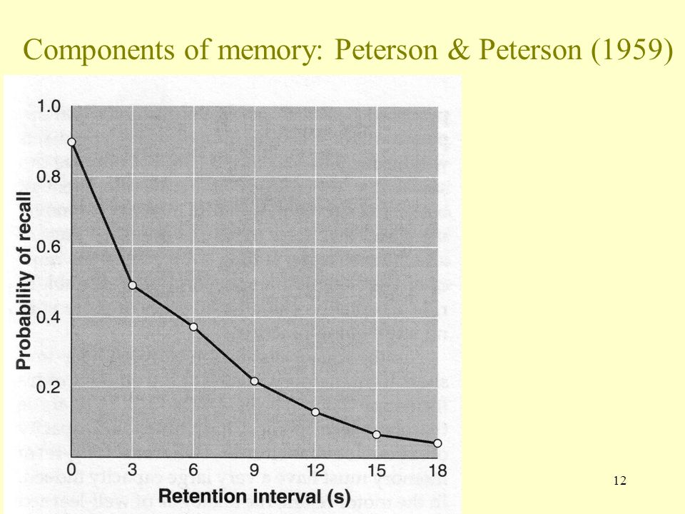 12 Components of memory: Peterson & Peterson (1959)