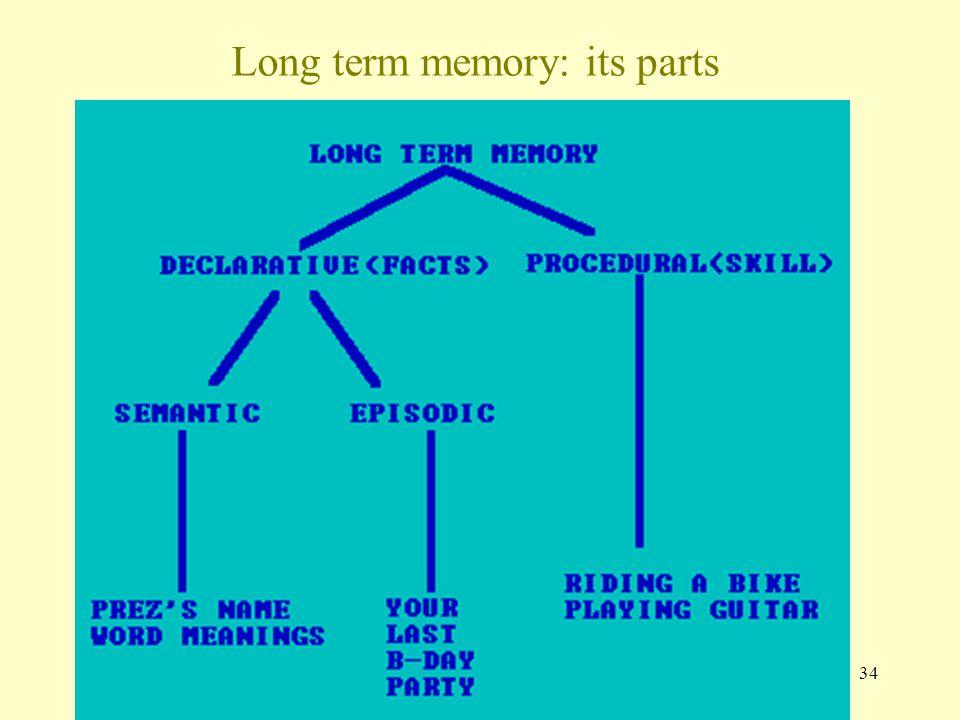 34 Long term memory: its parts