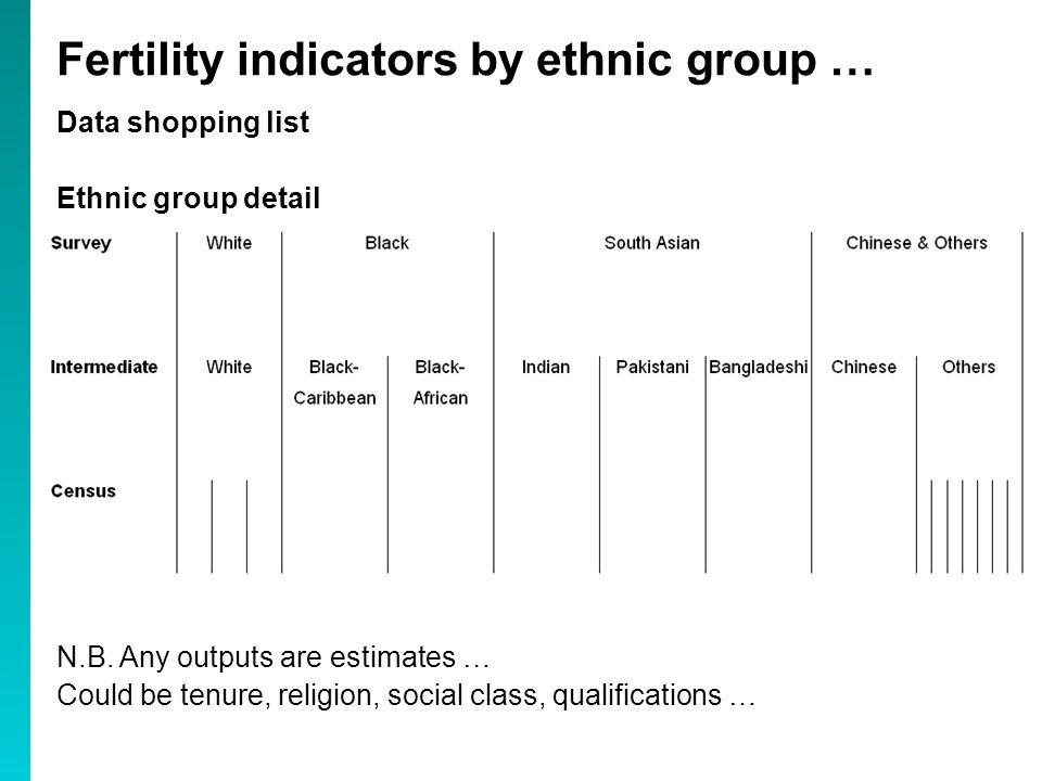 Data shopping list Ethnic group detail N.B.