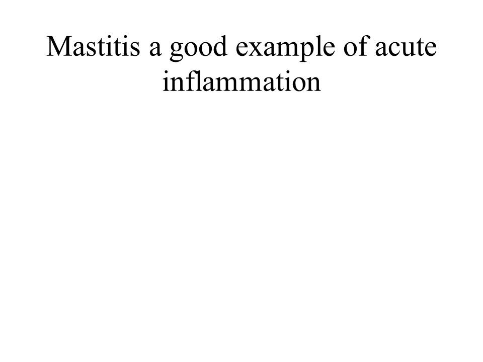 Mastitis a good example of acute inflammation