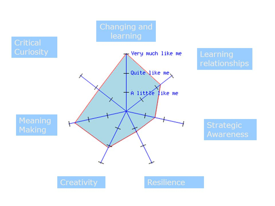 Changing and learning Learning relationships Strategic Awareness ResilienceCreativity Meaning Making Critical Curiosity