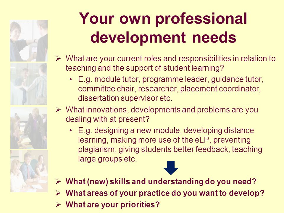Your own professional development needs  What are your current roles and responsibilities in relation to teaching and the support of student learning.