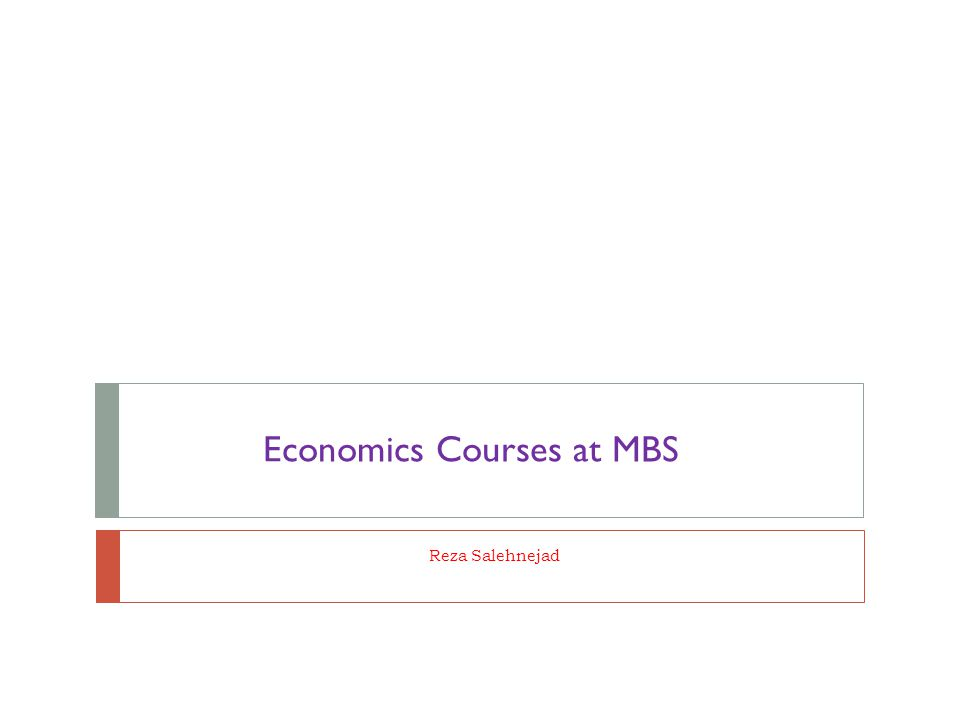 Reza Salehnejad Economics Courses at MBS