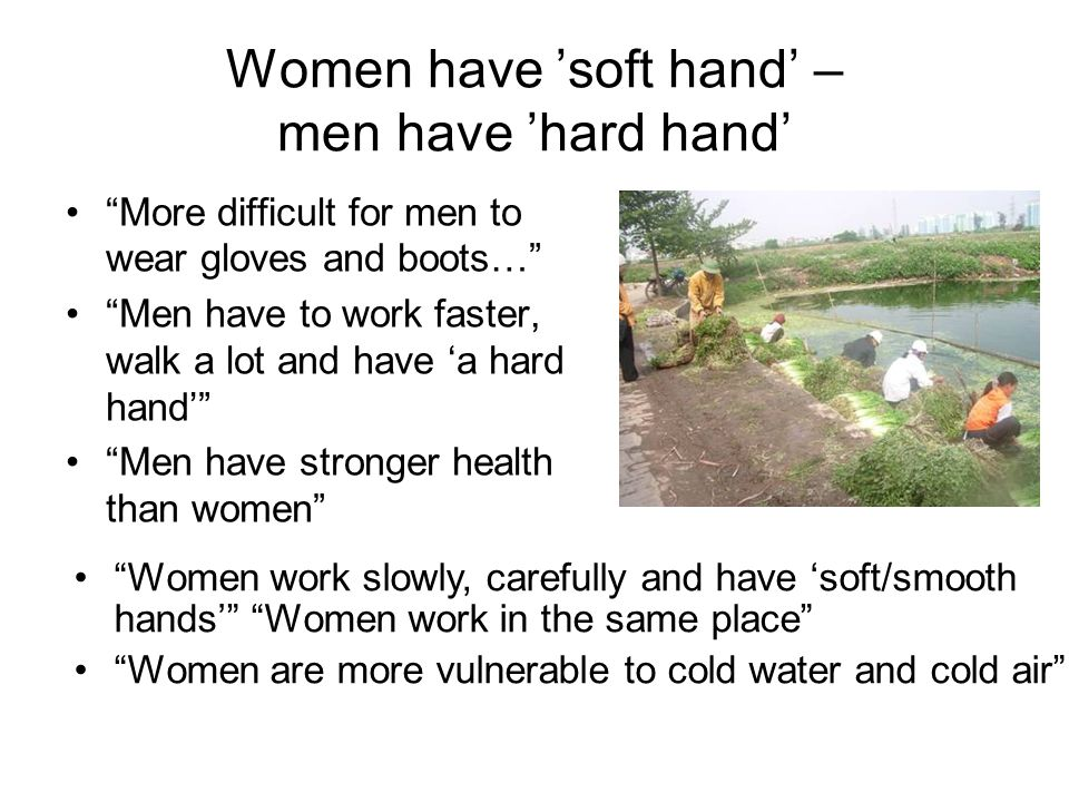 Women have 'soft hand' – men have 'hard hand' More difficult for men to wear gloves and boots… Men have to work faster, walk a lot and have 'a hard hand' Men have stronger health than women Women work slowly, carefully and have 'soft/smooth hands' Women work in the same place Women are more vulnerable to cold water and cold air
