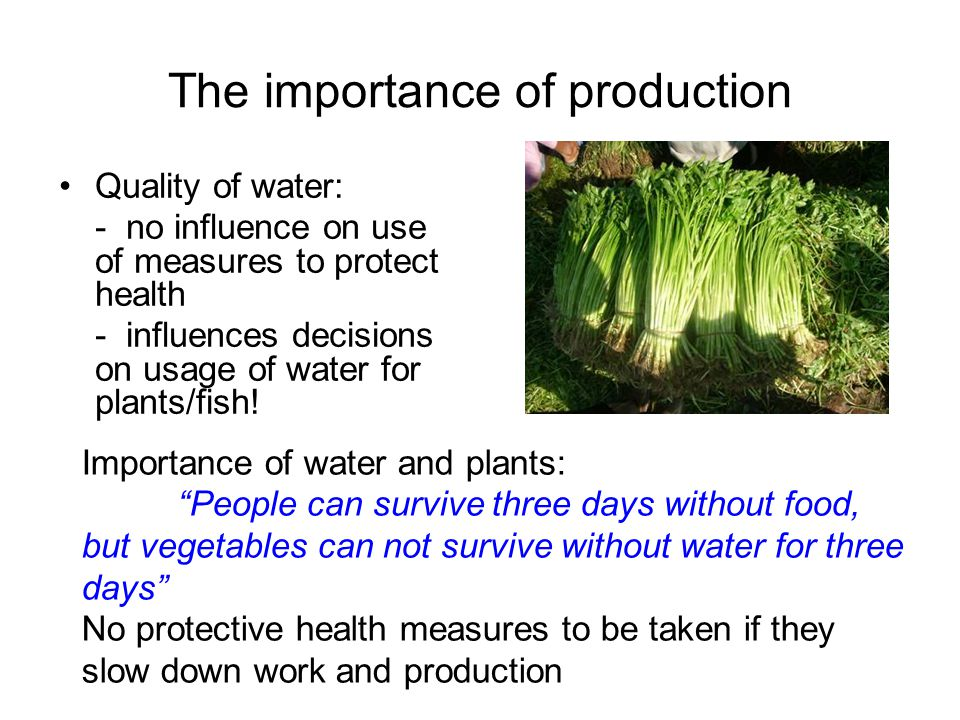 The importance of production Quality of water: - no influence on use of measures to protect health - influences decisions on usage of water for plants/fish.