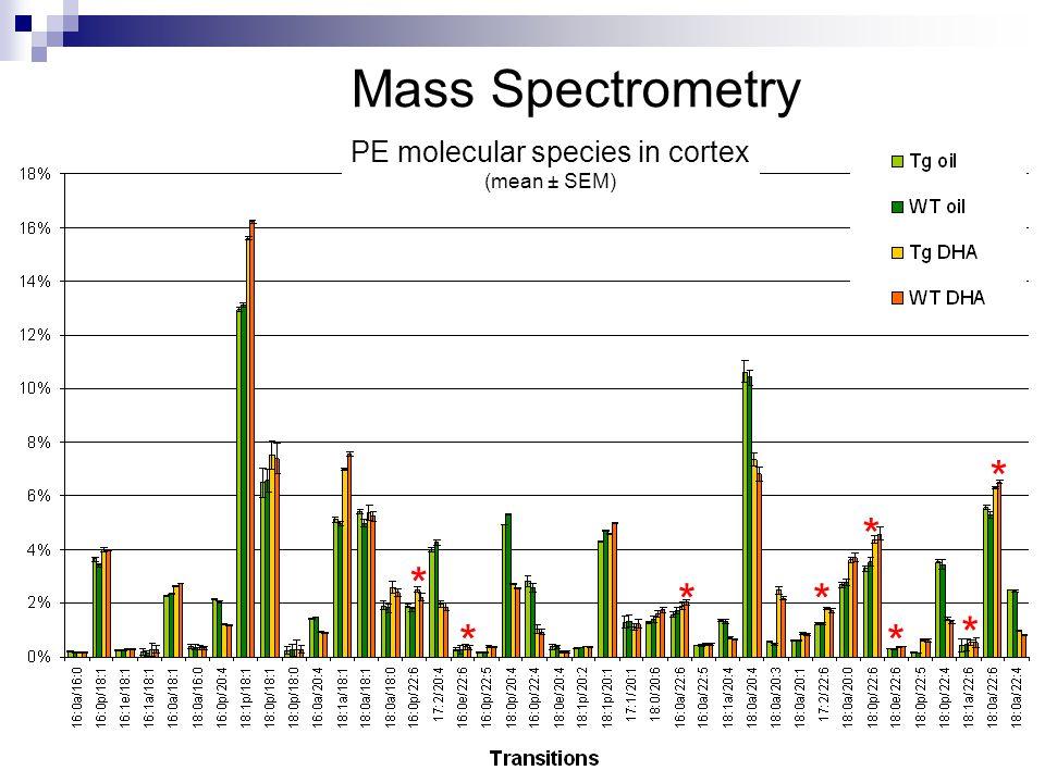 * * ** * * * * Mass Spectrometry PE molecular species in cortex (mean ± SEM)