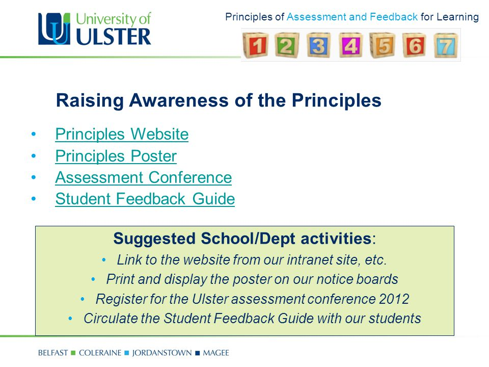 Principles of Assessment and Feedback for Learning Raising Awareness of the Principles Principles Website Principles Poster Assessment Conference Student Feedback Guide Suggested School/Dept activities: Link to the website from our intranet site, etc.