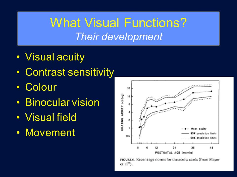 What Visual Functions.