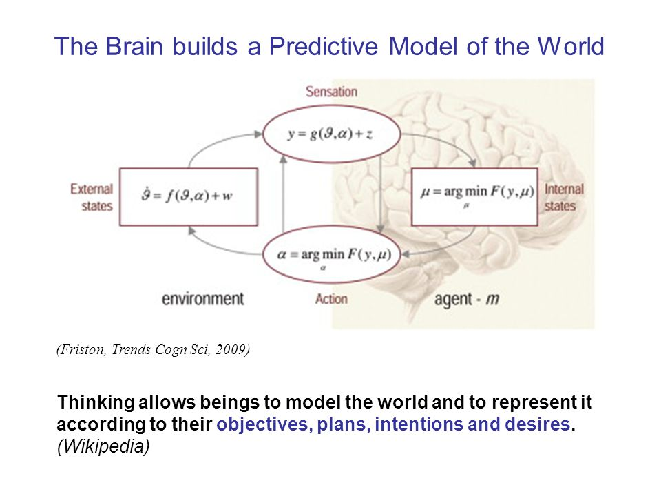 The Brain builds a Predictive Model of the World (Friston, Trends Cogn Sci, 2009) Thinking allows beings to model the world and to represent it according to their objectives, plans, intentions and desires.