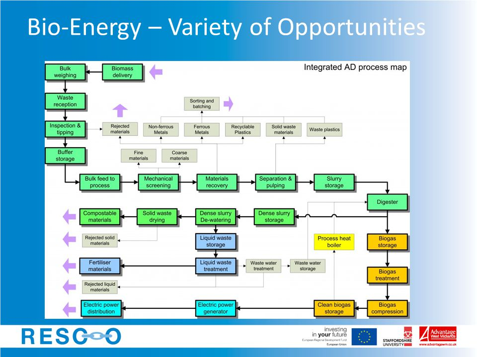 Bio-Energy – Variety of Opportunities