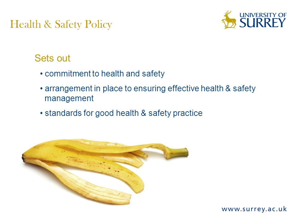 Sets out commitment to health and safety arrangement in place to ensuring effective health & safety management standards for good health & safety practice Health & Safety Policy