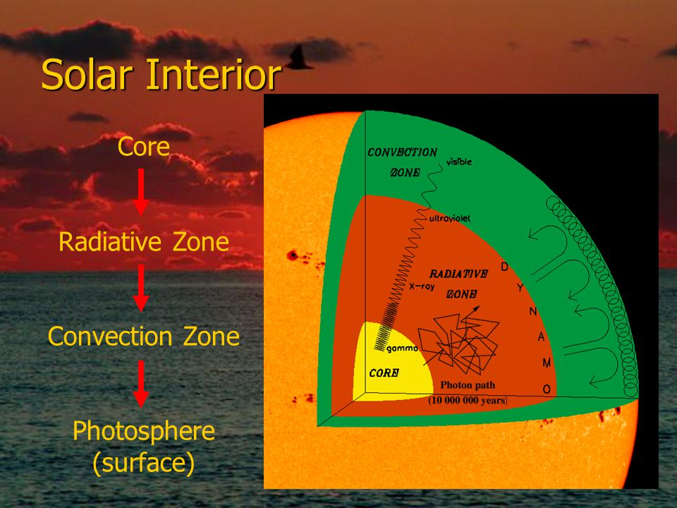 Solar Interior Core Radiative Zone Convection Zone Photosphere (surface)