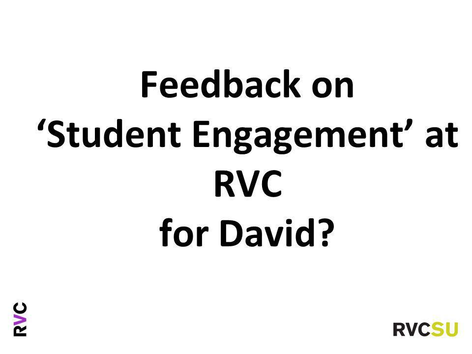 Feedback on 'Student Engagement' at RVC for David