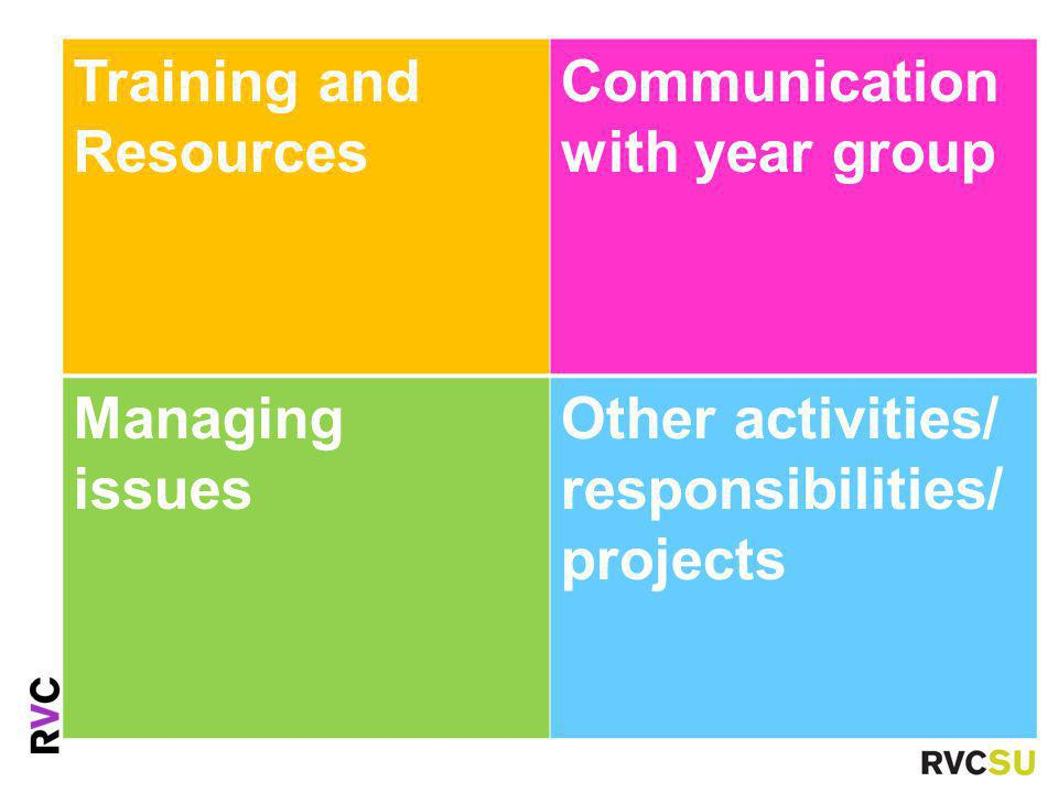 Training and Resources Communication with year group Managing issues Other activities/ responsibilities/ projects