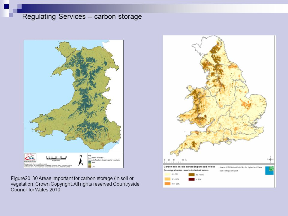 Figure20. 30 Areas important for carbon storage (in soil or vegetation.