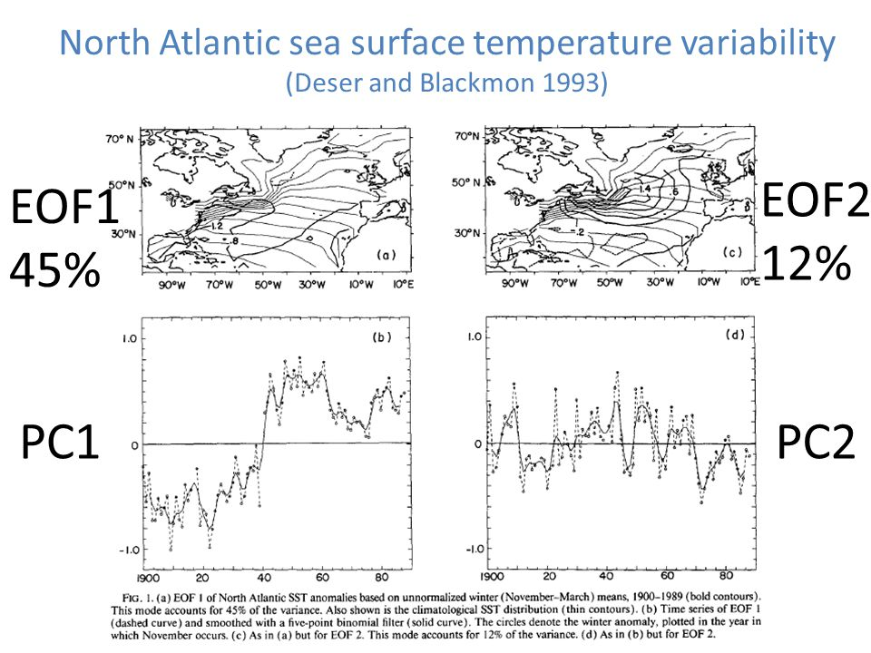 North Atlantic sea surface temperature variability (Deser and Blackmon 1993) PC2PC1 EOF2 12% EOF1 45%